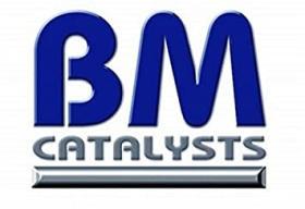 SUBFAMILIA DE BM  BM CATALYST